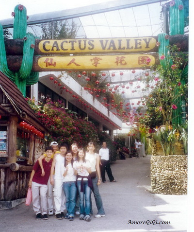 Catus Valley