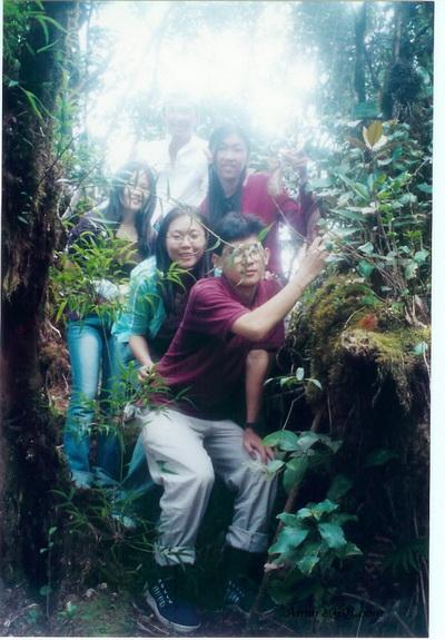 JungleTrekking