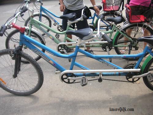 Couple Bicycle (2)