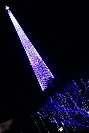 Singapore Christmas Celebration