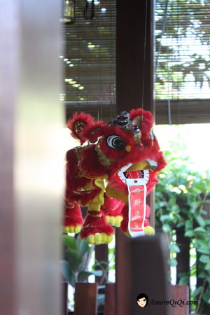 Chinese New Year 2010 (3)