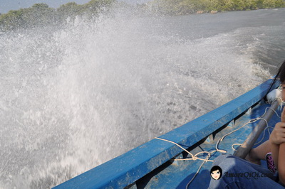 Tanjung-Piandang (14)