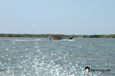 Tanjung-Piandang (28)