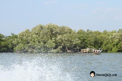 Tanjung-Piandang (31)