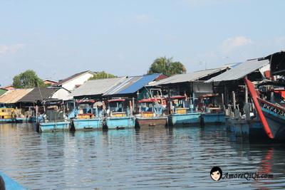 Tanjung-Piandang (35)