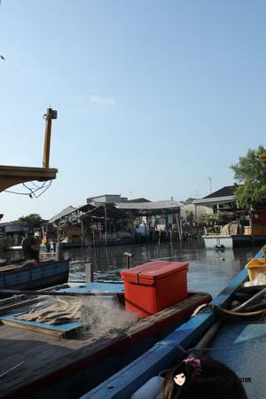Tanjung-Piandang (44)