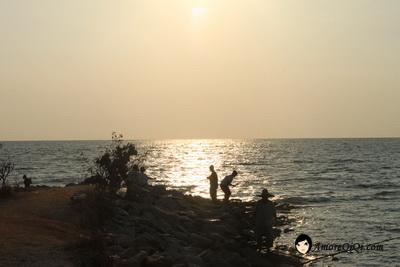 Tanjung-Piandang (60)